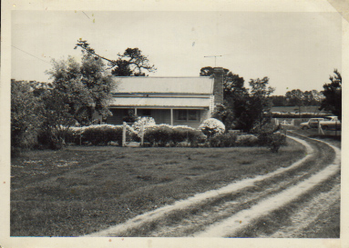 Original Treetops Cattery Homestead Circa 1960